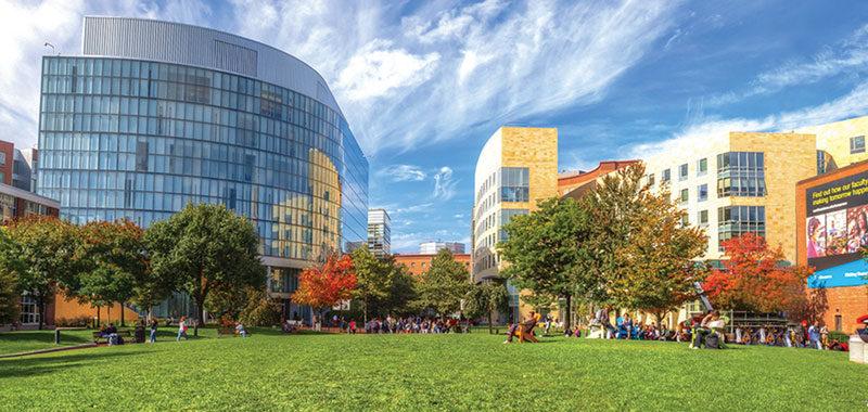 Wetskills Northeastern University